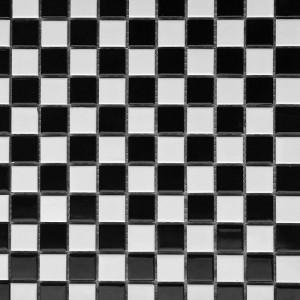 Gloss 25x25mm B&W Checker CAM2