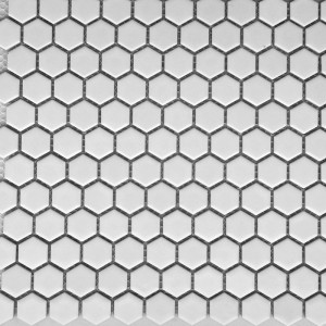 Glossy White Hexagon 23x26mm PPM888